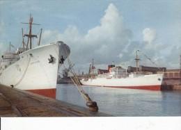 Cp , TRANSPORTS , FORT RICHELIEU , Bananiers Dans Le Port De Dieppe - Commerce