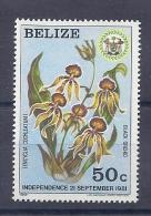 150025269  BELIZE. YVERT  .  Nº  562  **/MNH - Belize (1973-...)