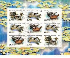 Sowjetunion 6210 - 6212 Enten Ducks Used Gestempet - 1923-1991 USSR