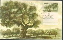 Israel MC - 1954, Michel/Philex No. : 80 - MNH - *** - Maximum Card - Cartes-maximum