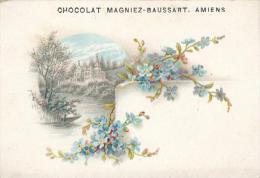Chromo Chocolat Magniez-Baussart Amiens Clématites - Cigarette Cards