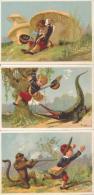 Lot De 6 Chromos Scènes De Chasse Afrique Colonies Humour - Kaufmanns- Und Zigarettenbilder