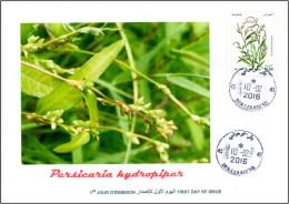 ALGERIA 2016 FDC medicinal plants plantes medicinales Flora Flore Heilpflanzen plantas Persecaria hydropiper