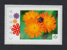ORANGE WILD FLOWER Picture Postage MNH stamps Canada 2015 [p15/11wf2/2]