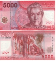 CHILE  New  5'000  Pesos ,   Polimer Issue     P163d     2013   UNC - Chile