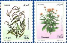 Alg�rie 2016 - 1735/1736 - Plantes m�dicinales