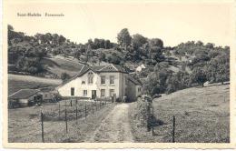 OLNE Saint HADELIN ( 4877) Promenade - Olne