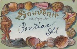 Shell Border Souvenir From Pontiac Illinois