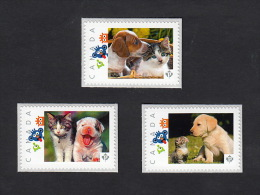 KITTEN & PUPPY Set Of 3 Picture Postage MNH Stamps Canada 2016 [p16/01-2rk3] - Honden