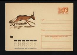 USSR 1974 Postal Cover Fauna Saiga Antelope (066) - Autres