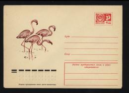 USSR 1974 Postal Cover Bird Flamingo (067) - Flamingo