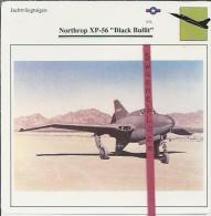 Vliegtuigen.- Northrop XP-56 - Black Bullit - Jachtvliegtuigen. -  V.S. - U.S.A. - Vliegtuigen