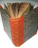 Botanik Die CHARACEEN ( Characées ) Von Deutschlands, Oesterreichs  Und Der Schweiz  Von Dr W Migula - Livres, BD, Revues