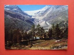 Alp Grüm Mit Palügletscher, 1963, Foto Hugo Kopp, N° 102 C, Bahnhofbüffet Berninabahn - GR Grisons