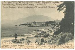 Neuchâtel Vue Depuis Les Saares 1903 (déchirure à Droite) - NE Neuchâtel