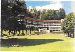 THIEZAC  (cpsm 15)  LA SAPINIERE - France