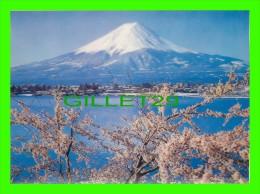 TOKYO, JAPON - BELLE MONTAGNE ENNEIGÉE EN 3 DIMENSIONS - KOWA DISPLAY CO INC - - Tokyo