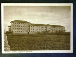 PUGLIA -BARI -MOLFETTA -F.G. LOTTO N°495 - Bari