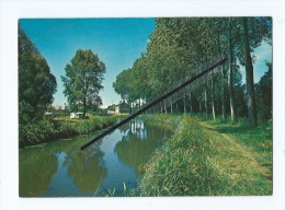 CPM - La Guerche Sur L'Aubois - Les Bords Du Canal Du Berry - La Guerche Sur L'Aubois
