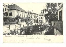 Schweiz Kt Zug  Menzingen Mitteldorf  Ges.16.9.1902 Feldpost VIII Div.  Nach Glarus  #471 Foto Kopp-Weber - ZG Zoug