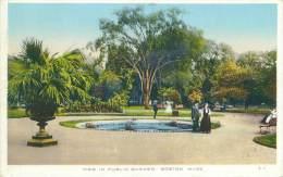 BOSTON - View In Public Garden - Boston