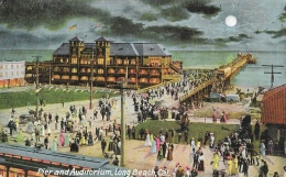 Pier And Auditorium - Long Beach - California - Moonshine - Pub. By The O. Newman Company - Long Beach