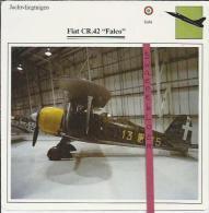 Vliegtuigen.- Fiat CR.42 - Falco - Jachtvliegtuigen. -  Italië - Vliegtuigen
