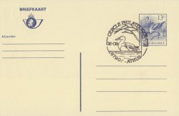 BELGIË/BELGIQUE:Illustr. Date Cancel On Post. St.:  ## 02-09-89 : ATHUS : Cercle Philatélique ## : EEND,CANARD,DUCK, - Ducks