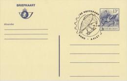 BELGIË/BELGIQUE:Illustr. Date Cancel On Post. St.:## 14-3-87 :AALST: De Hopperank ##:VOGEL,OISEAU,BIRD,AREND,AIGLE,EAGLE - Eagles & Birds Of Prey