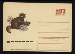 USSR 1974 Postal Cover Fauna Raccoon (099) - Autres