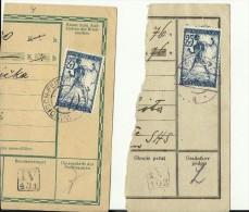 SLOVENIA   --  VERIGARI, CHAINBREAKERS  --  WINDISCH - FEISTRITZ  UND GONOBITZ  --  1919 - 1919-1929 Königreich Der Serben, Kroaten & Slowenen