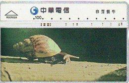 Snail Escargot Télécarte Phonecard  B 290 - Taiwan (Formose)