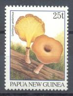 Papua New Guinea - 1996 Mushrooms 25t MNH__(TH-14175) - Papua Nuova Guinea