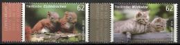 Deutschland / Germany / Allemagne 2015 3124/25 ** Tierkinder Eichhörnchen/Wildkatze (02. Januar 2015) - [7] Federal Republic
