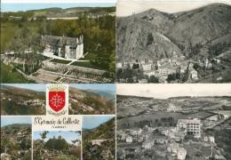 Lot De 19 Cartes Sur Le Département 48 - Lozère - 5 - 99 Postales