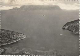 5071.   Olbia - Isola Di Tavolara - 1957 - Tabaccheria San Rocco Cuneo - Olbia