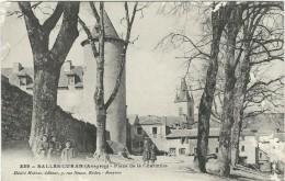 Aveyron : Salles-Curan,  Place De La Charmille, Animée - Frankreich