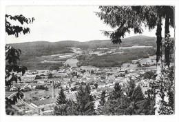 Cpsm: 88 GRANGES SUR VOLOGNE (ar. Saint Dié) Vue Générale (usine)  195? - Granges Sur Vologne