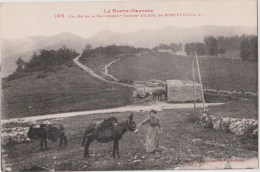 La Haute Garonne   Sommet Du Col Du Portet - Francia