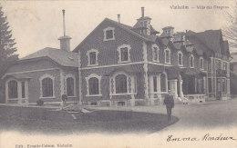 Vielsam - Villa Des Dragons (animée, Edit. Ernotte-Colson, Précurseur, 1905) - Vielsalm