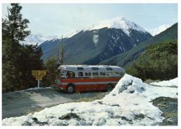 (230) New Zealand Lewis Pass And Bus - Nueva Zelanda