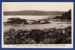 29 CLEDEN-CAP-SIZUN Baie Des Trépassés, Boë En Anâon, Vue De La Région Des Grottes - Cléden-Cap-Sizun