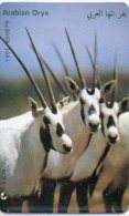 Antilope Oryx Autruche Animal Télécarte Jordanie Phonecard Telefonkarten  B 306 - Jordanie