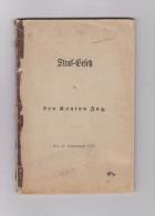 Schweiz Straf-Gesetz Für Den Kanton Zug 1876 - Politique Contemporaine