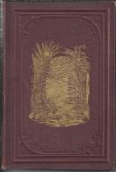 NL.- Boek. De Schepping Een Gedicht Van J.J.L. Ten Kate. 2 Scans - Poésie