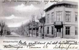 FALKÖPING (Schweden) - TRÄDGÄRDSGATAN, Gel.1904 - Schweden