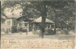 Altenburg - Plateau - Gel. 1904 - Verlag Louis Henke Nachf. Altenburg - Altenburg