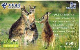 Kangourou Kangaroo Jungle Animal  Télécarte  Phonecard  Telefonkarte B308 - Chine