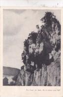 A Déterminer ( 3 Timbres) - Belgien