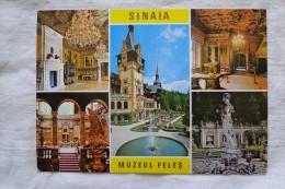 Romania Sinaia Muzeul Peles  A 84 - Romania
